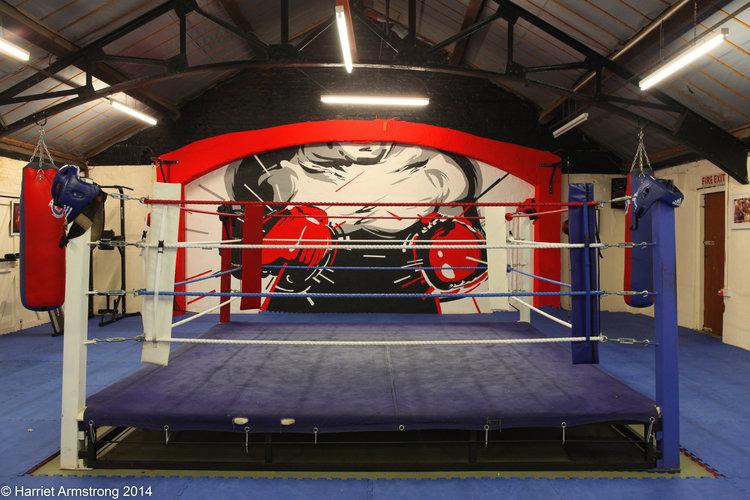 Revival Boxing mural Kong Studio gloves ring